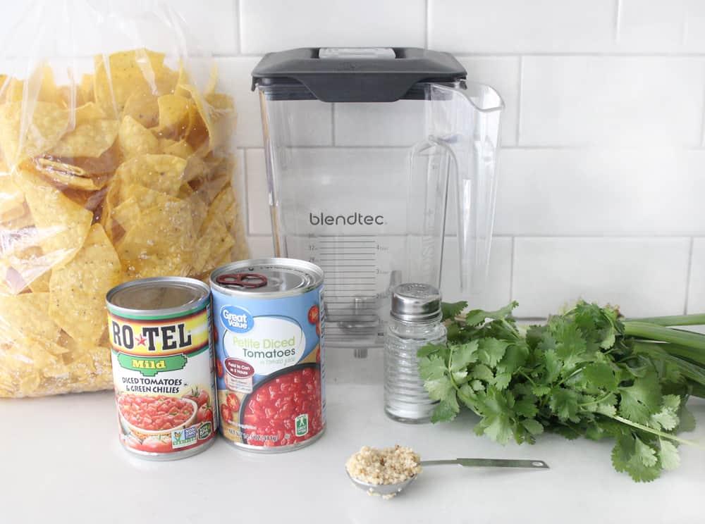 blender salsa ingredients on counter