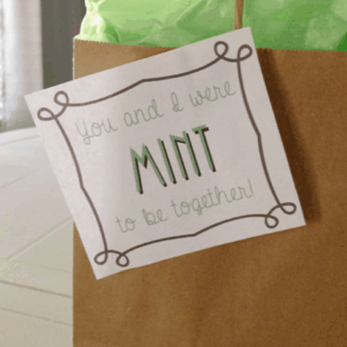 Mint Themed Gift Ideas with Free Printable Tags!