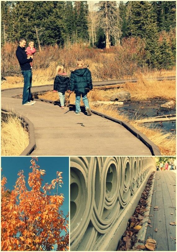 family-friendly fall memories 2