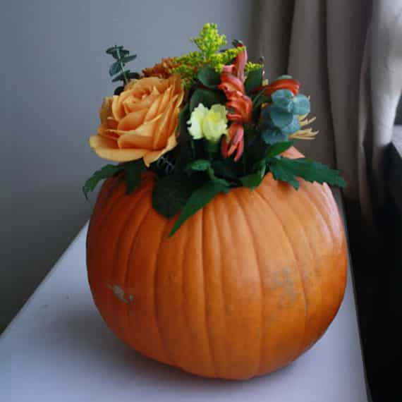 simple thanksgiving centerpiece: flowers in a pumpkin vase