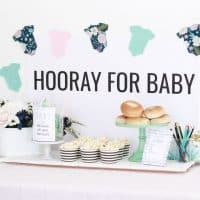 Simple Baby Shower Ideas you can do on any budget!