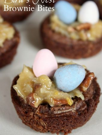 Bird's Nest Brownie Bites
