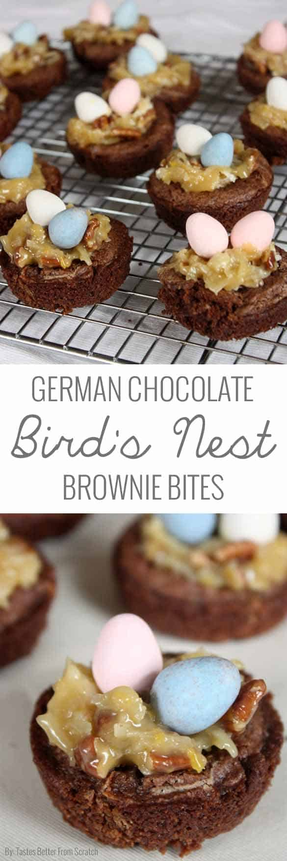 These German chocolate bird's nest brownie bites are beyond delicious! So fun and festive too!