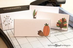 To DIY Thanksgiving place holders