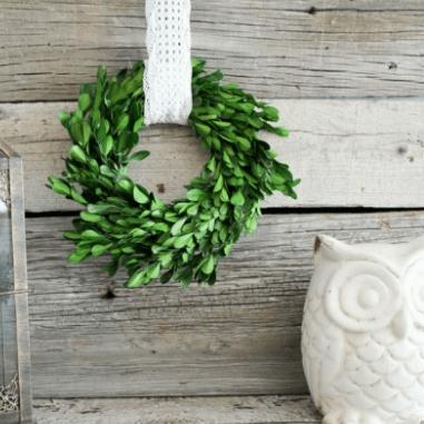 Mini Boxwood Wreath Tutorial