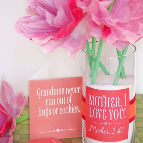 Cute Mother's Day Gift Idea and Printables