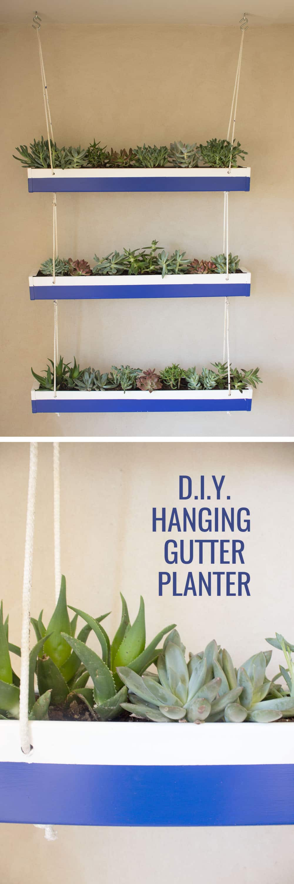 Okay seriously? How adorable is this DIY hanging gutter planter??! So cheap to make, too! Can't wait to try it out.