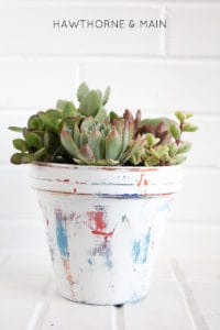 colorful+clay+painted+flower+pot+with+succulents 3