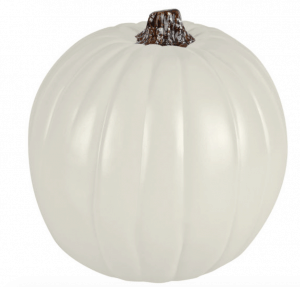 http://www.michaels.com/seasonal-decor/craft-pumpkins/851417472/?cm_mmc=PR-_-MichaelsMakers-_-PrettyProvidence-_-CraftPumpkins