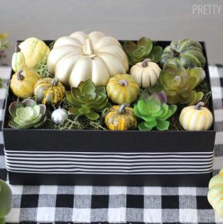 Modern Thanksgiving centerpiece with pumpkins and succulents in a black box.
