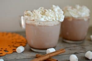 Pumpkin Spice Hot Chocolate: The perfect mix of pumpkin spice and cocoa!