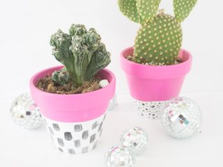 Easy Modern Indoor Planters for Succulents, Cacti and House Plants
