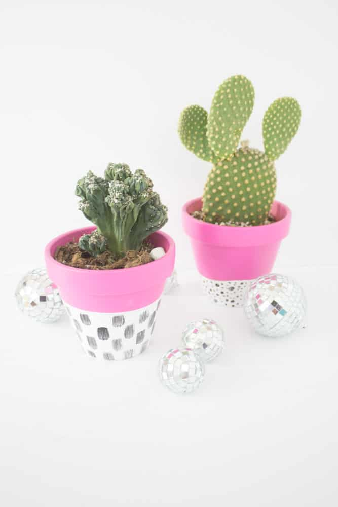 Easy Modern Indoor Planters For Succulents Cacti And House Plants