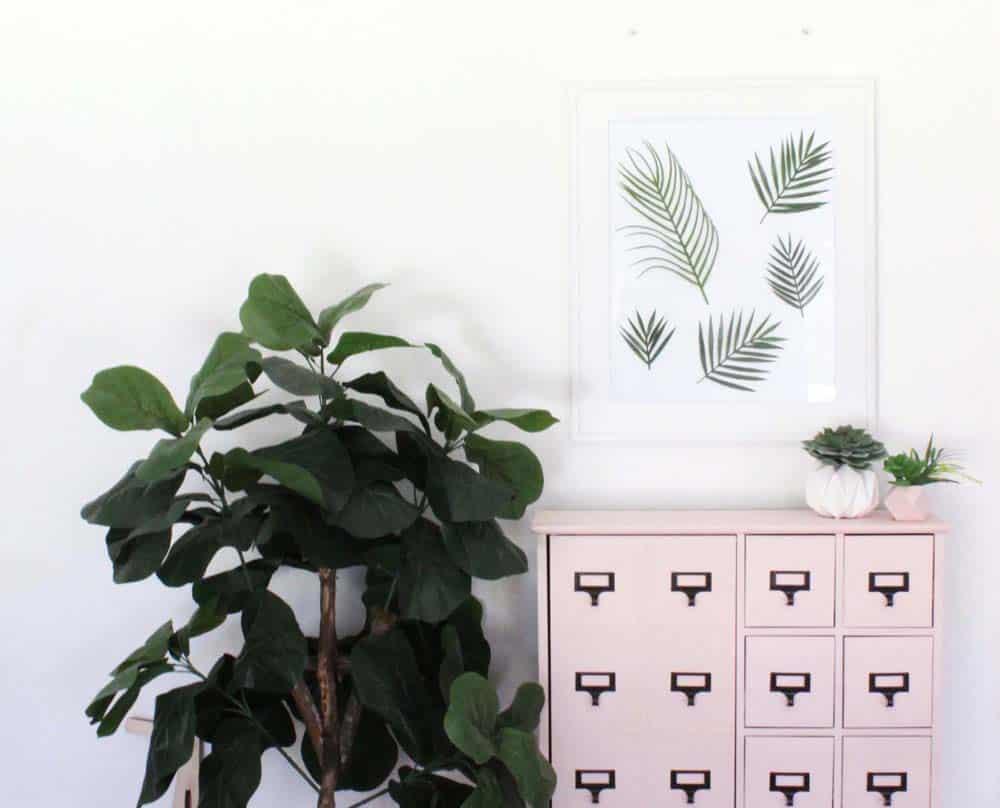 tropical-leaf-frame-8