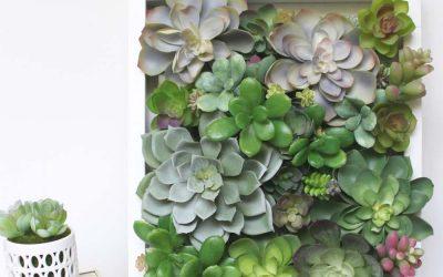 succulent-shadow-box-decor4