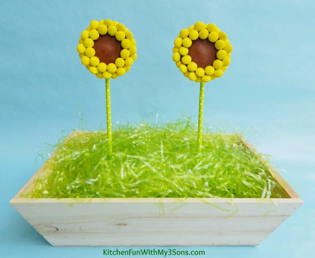 reeses-sunflower-pops-2-1024x841