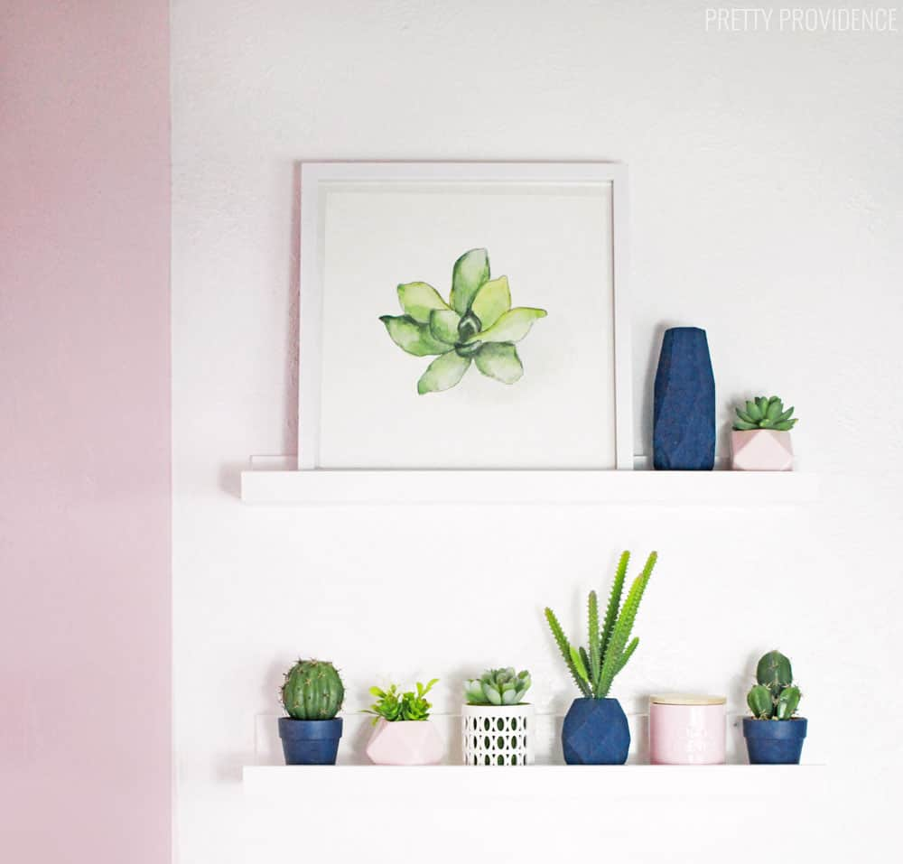 Bathroom shelves decorated with cacti and succulents!