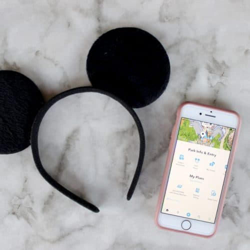 Everything You Need to Know About the Disneyland App