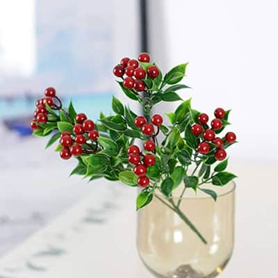holly-berry-stem