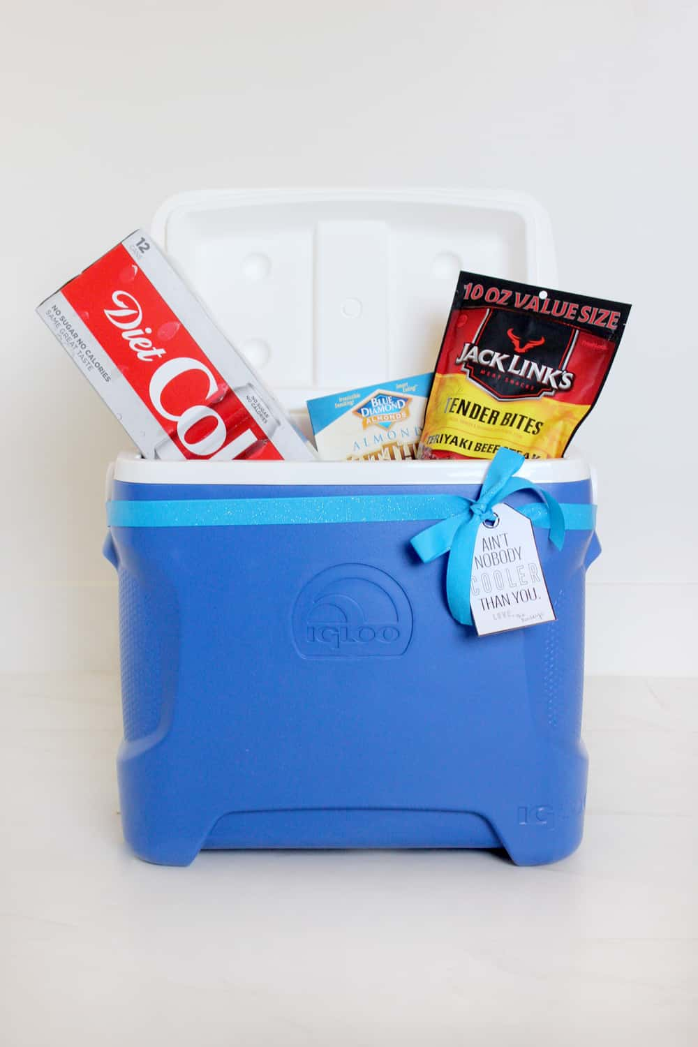 I love this cooler gift idea with the printable tag! So simple, but useful and fun!