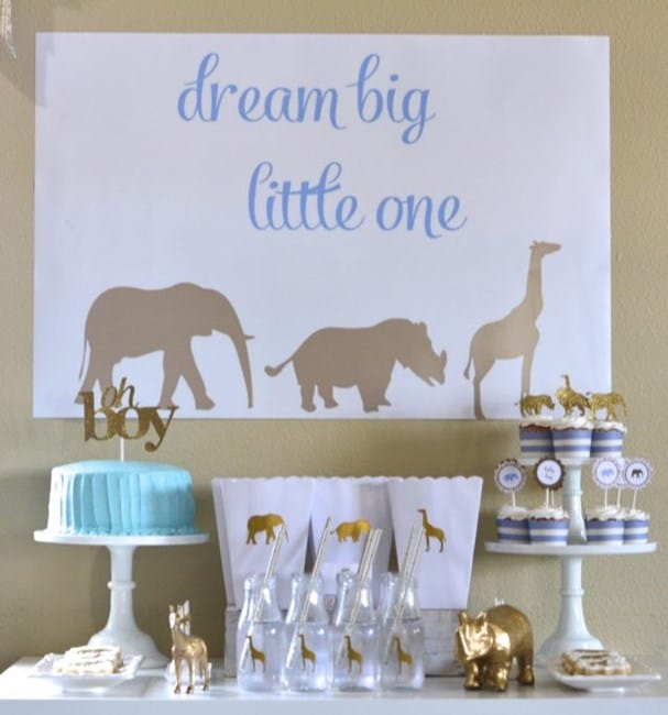 Safari Baby Shower Theme for Boy