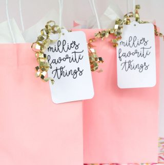 Birthday Party Goodie Bags Idea