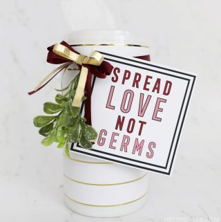 Spread Love, Not Germs gift tag on sanitizer wipes container wrapped with holly and a bow