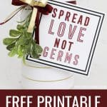 Spread love, not germs gift tag printable with title text