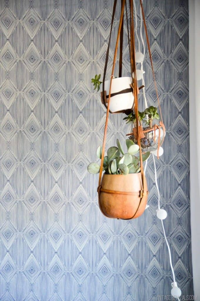 Fabric wallpaper with a blue diamond pattern and planters hanging in front of it