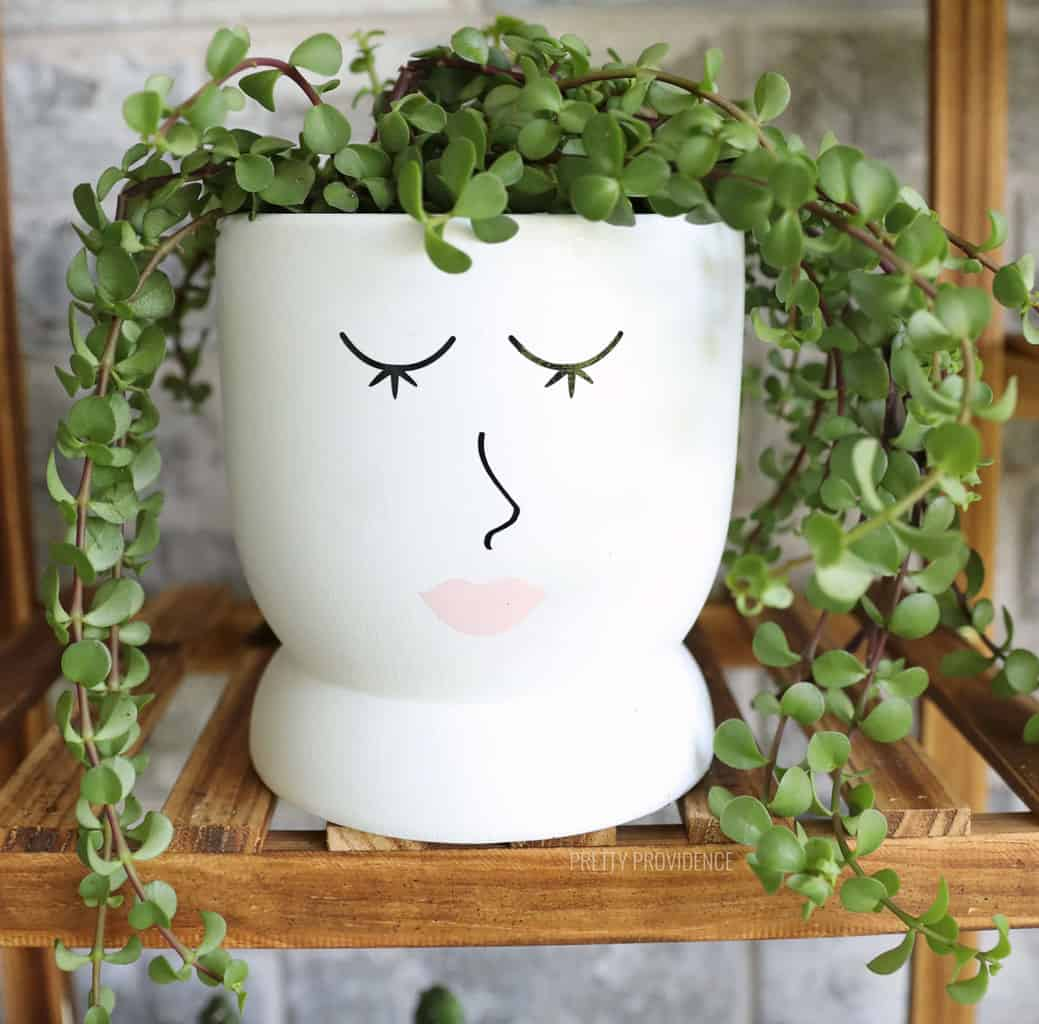 White Planter with eyelashes, nose and lips on it with plant tendrils coming out